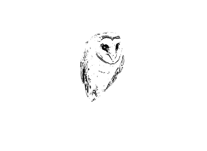 HR Wise Owl Logo